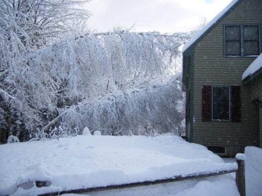 New England White Christmas